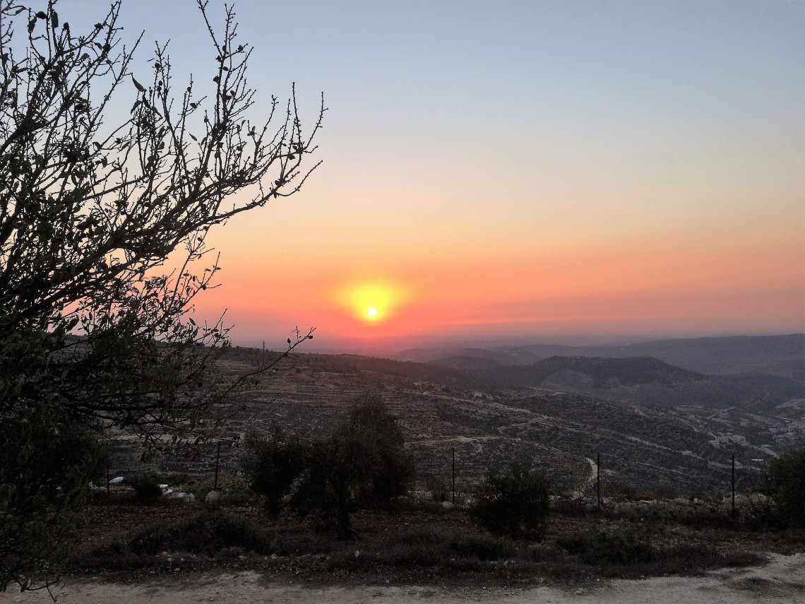 ToN - Sunset (2).jpg